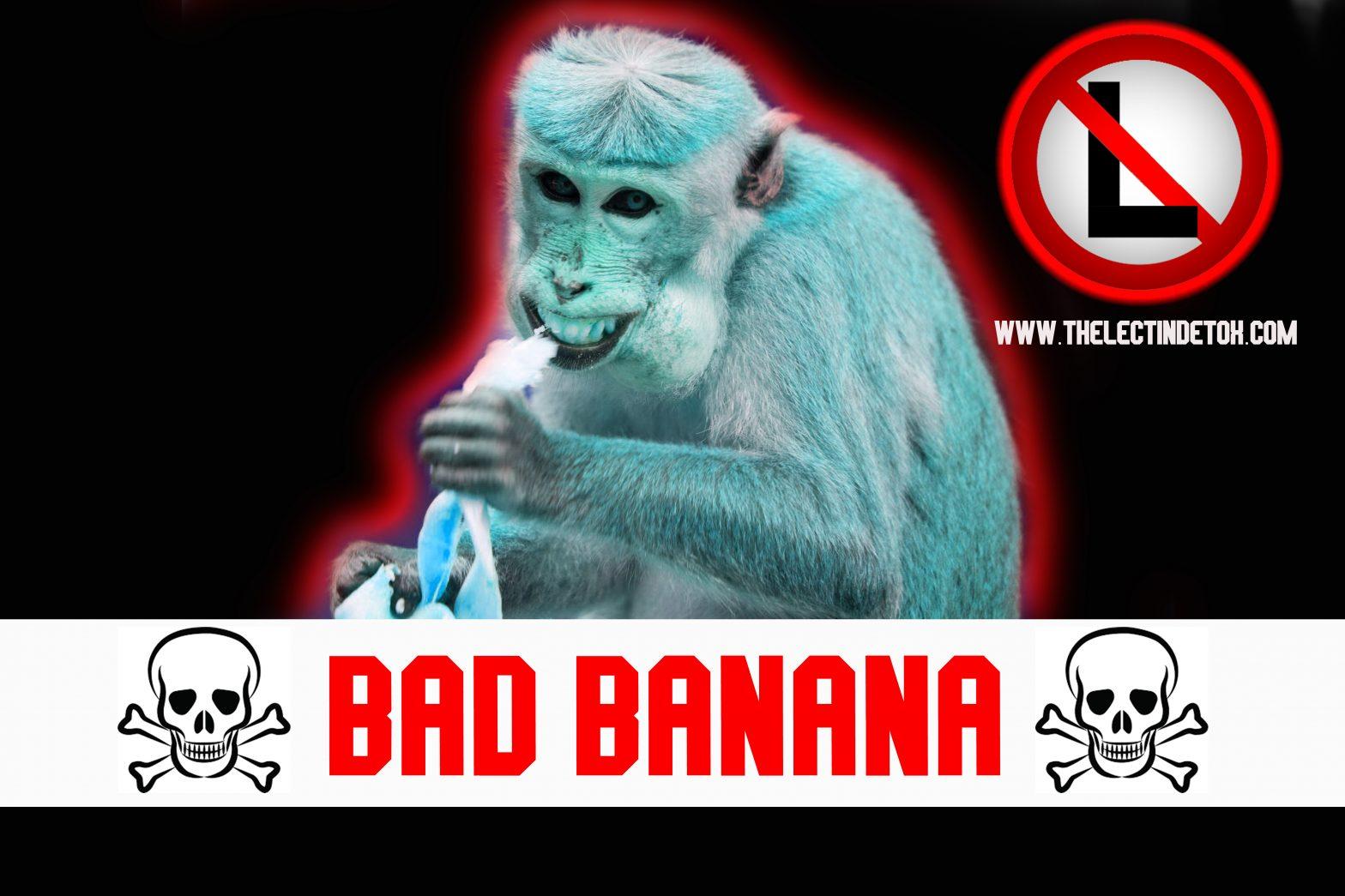 banana lectin detox eczema autoimmune